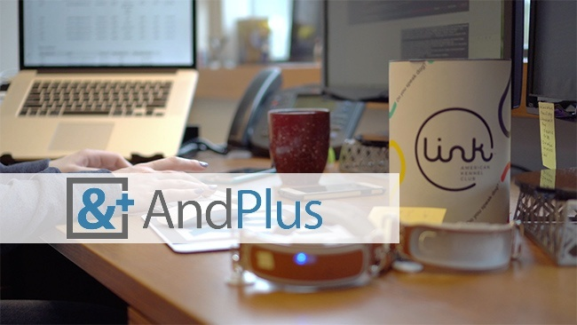 check the post:Staff and Skill Augmentation the AndPlus Way for a description of the image